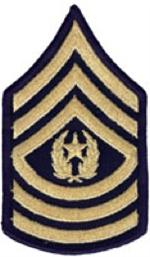 Enlisted Dress Blue Rank Female