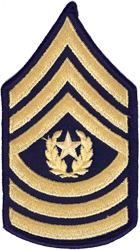 Enlisted Dress Blue Rank Male