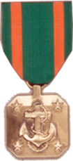 Navy & Marine Corp Full Size Medals