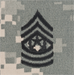 ACU Rank Insignia Without Velcro for BDU Hats